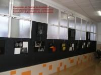 Exposición en el Colegio Santo Domigo Savio de Petrer: 26/02/2015