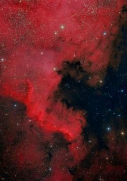 Nebulosa Norteamérica: NGC7000